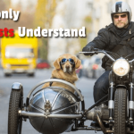 Only Motorcyclists Understand