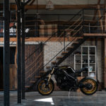 "Shed-build: Triumph Speed Triple ""Paleo"" from the Netherlands"